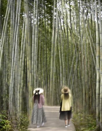 Les filles aux bambous_LN